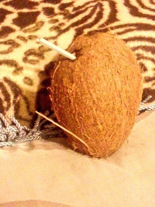 hindistan cevizi sutu nerede satilir